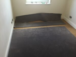 Carpet replacement progress