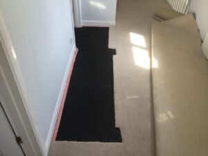 Carpet patch & replace progress