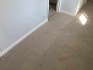 Carpet patch & replace after