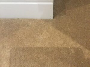 Carpet burns after