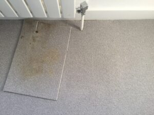 Carpet discolouration comparison